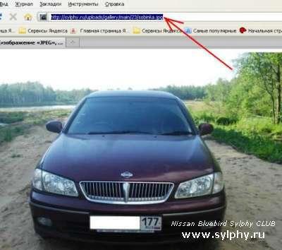 Как вставить фото на сайт