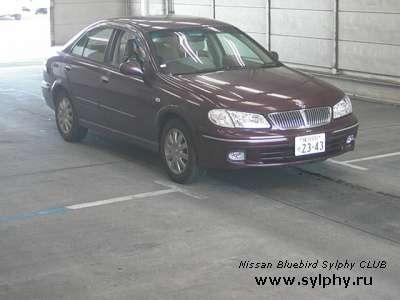 Nissan Bluebird Sylphy в разбор.