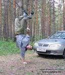 Красноярский лес