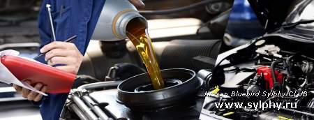 Автомобильные колеса и ваша безопасность